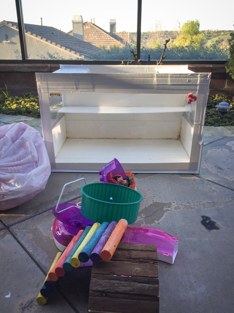 After having the closure we needed with Tilly, Steve and I broke down the cage I made for her and boxed up all the Hammy goods. Going thru her cabinet and throwing away all her stuff, seriously made me have a break down but I was glad that was the last of it. We've switched over to having fun remembering all the fun we had with her.
