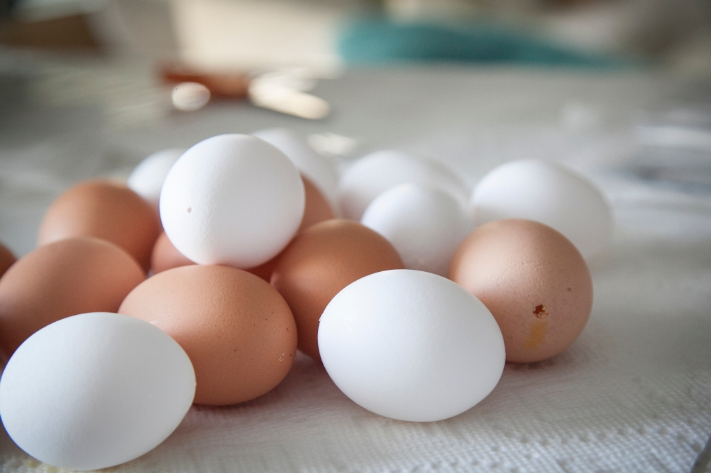 This year we decided to use white eggs and give the brown ones a try. I've seen them on other blogs and have bee really excited to make them.