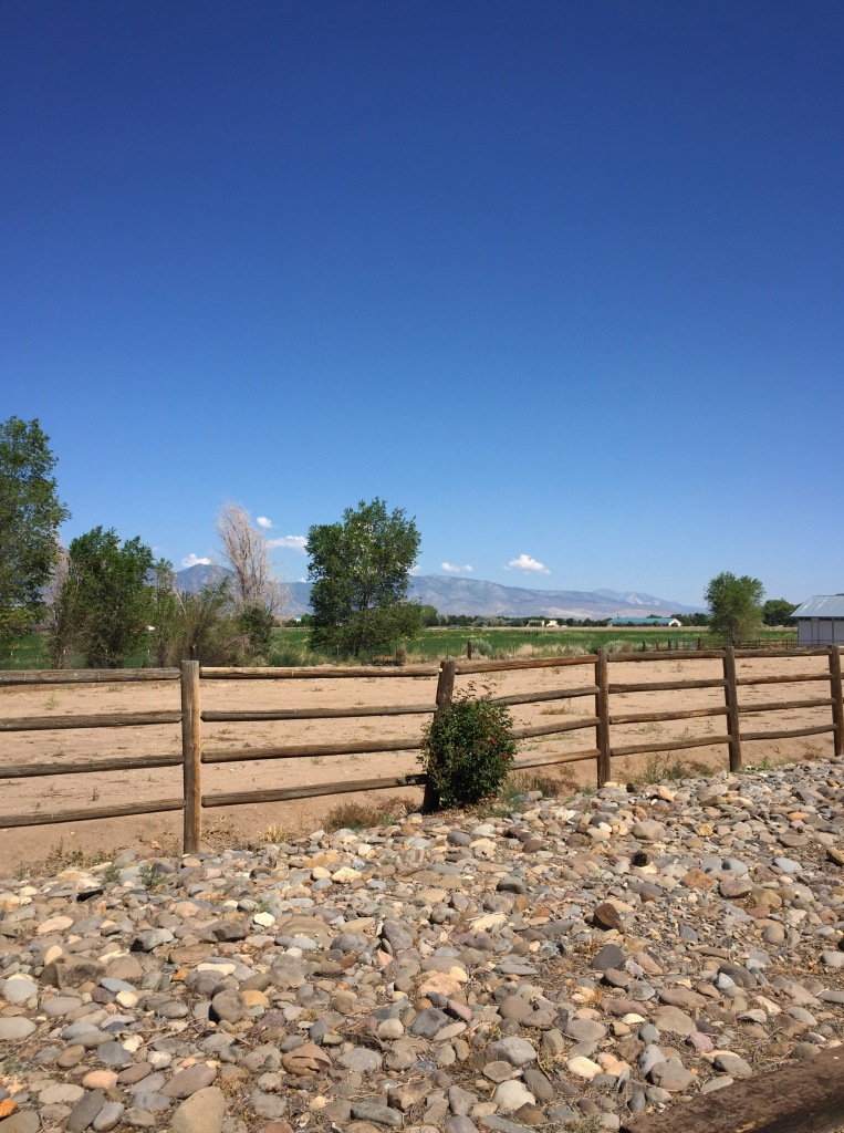 The Sierras from the property.