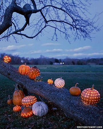 I love these! http://www.architectureartdesigns.com/33-spoooky-halloween-outdoor-decorations/