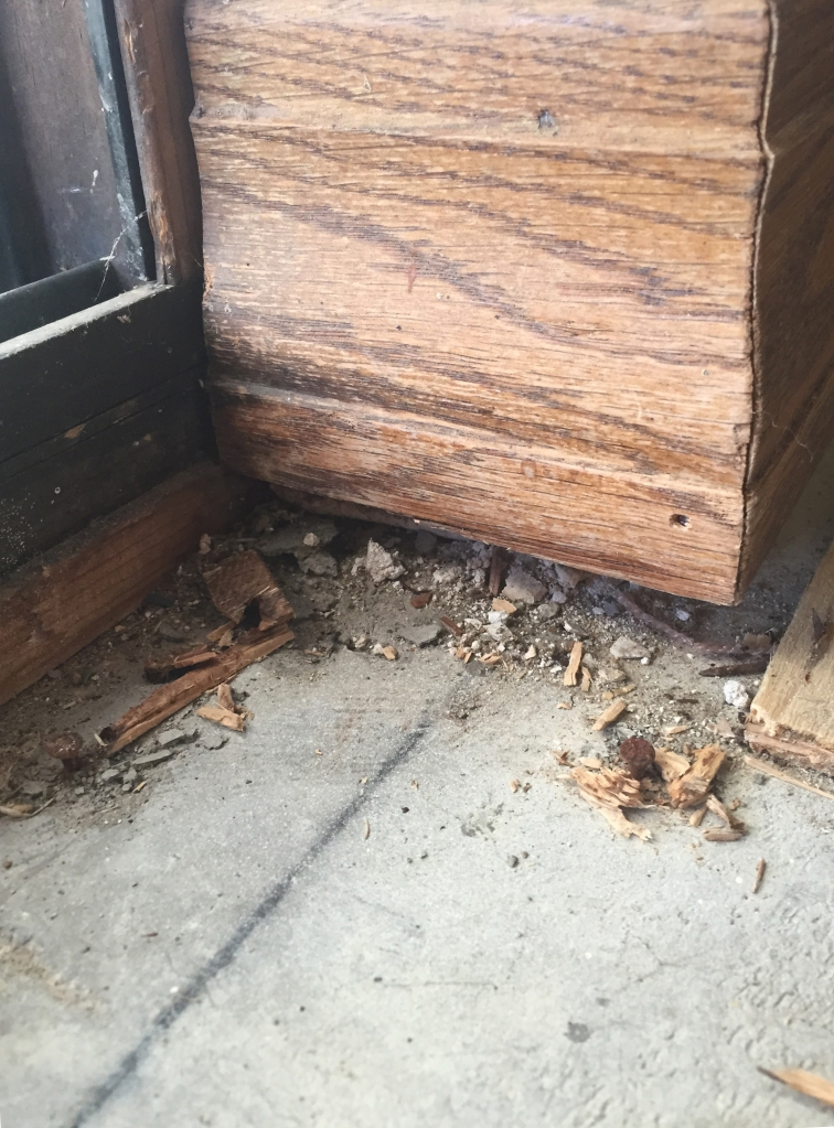 This is a baseboard under the master bedroom windows. Sure, it was next to a slidding door which leads out to a sunroom, but as you'll see, this happens in each room no matter where it is located. The carpet holds the dirt in.