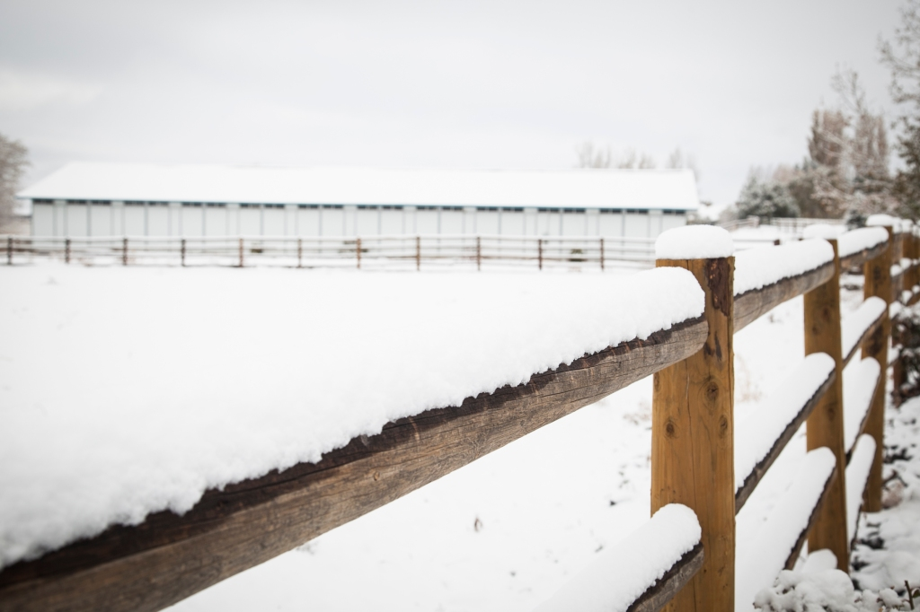 Looking over one of the corrals to the horse barn.